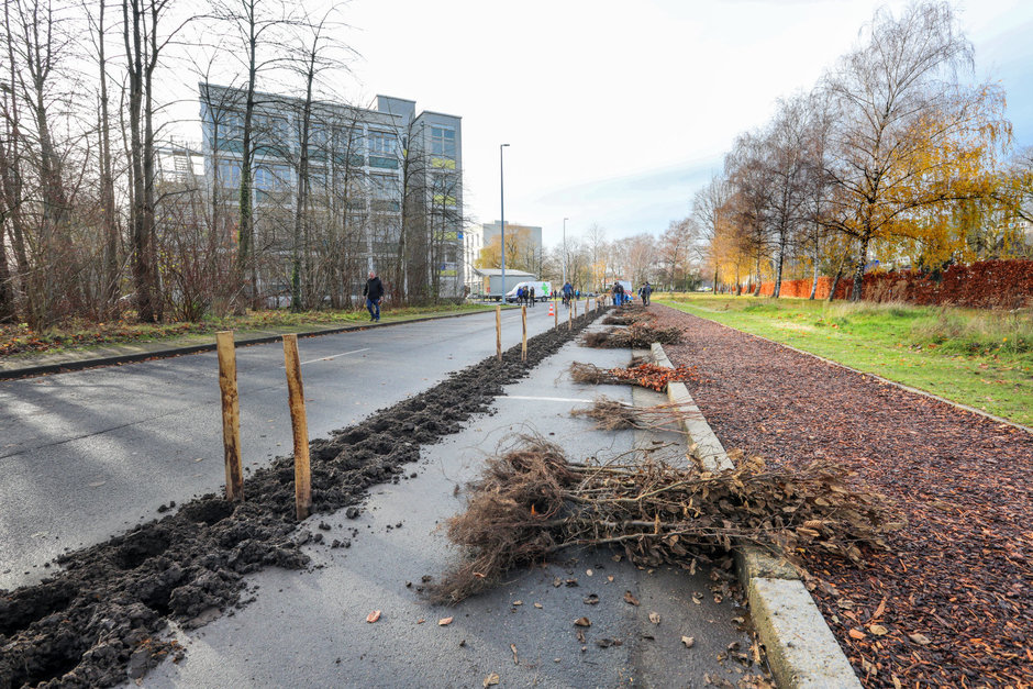 'Plant your Campus' op Campus Sterre